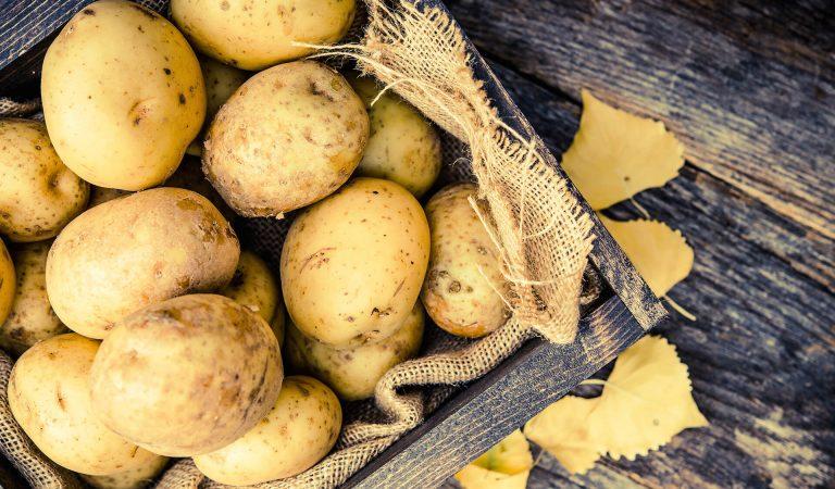 Patates Diyeti Nasıl Zayıflatır